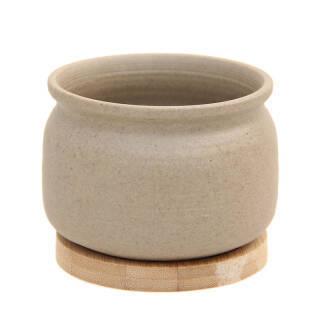 世纪奥桥 肉肉花盆仿茶罐形拇指花盆含木托 WY4002 *14件 100元(合7.14元/件)